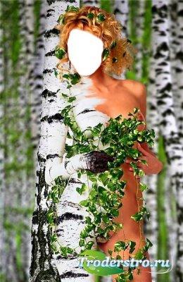 Шаблоны для фотошопа - Девушка-Береза
