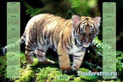 PSD исходник для фотошопа – Календарь с тигрёнком