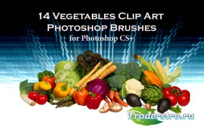 14 Vegetable Clip Art Photoshop Brushes