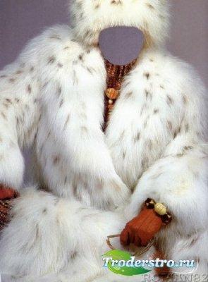 Шаблон для фотошопа - Мисс зима