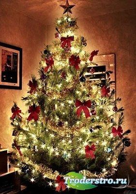 FREE Christmas Tree 1.4
