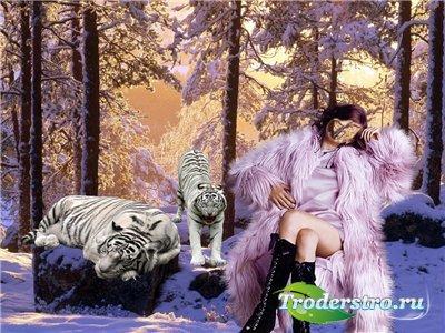 Женский шаблон для фотошопа - С тиграми в лесу