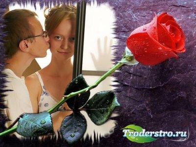 Рамка для фотошопа - True Love Forever