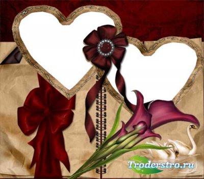 Рамка для фотошопа – Лебеди любви