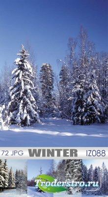 IZ088 Winter | Зима - Клипарт для фотошопа