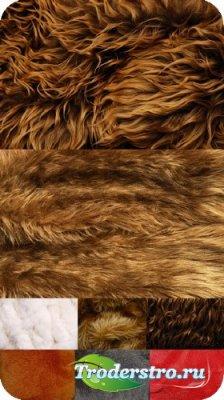Текстуры для фотошопа - Skin of animals