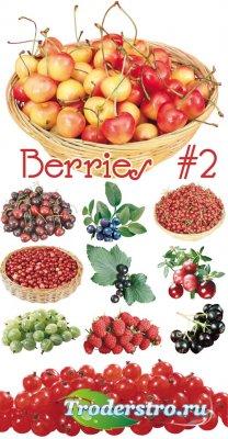 Berries | Ягоды - Клипарт для фотошопа