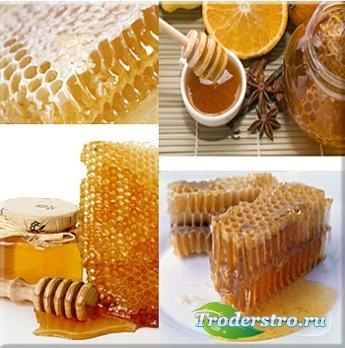 Мёд - Клипарт для фотошопа