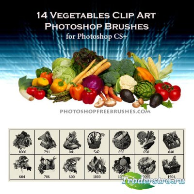 Vegetable PS Brushes - Кисти для Фотошопа