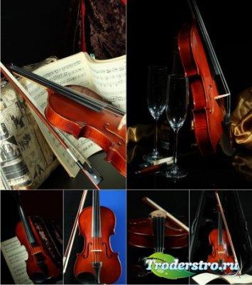 Stock Photos - Скрипка
