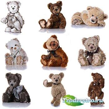 (Teddy bears) Медведи - плюшевые игрушки - клипарт для фотошопа