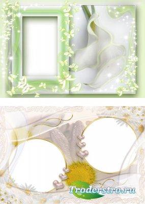 Рамка для фотошопа - Нежность цветов