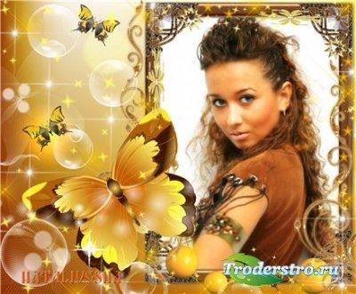 Рамка для Photoshop –  Солнечные бабочки