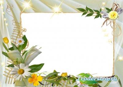 Ромашки - рамка для фотошопа