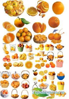 Клипарт - Апельсины в PNG