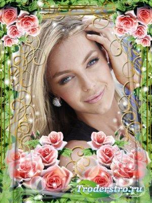 Рамочка для фотошоп - Розовые розы