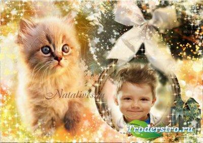 Рамка детская для Photoshop – Год котенка