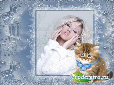 Рамочка для фото - Милый котенок