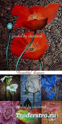Картины - Прекрасные цветы