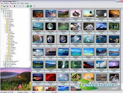 Altarsoft Image Viewer 1.1 + Portable