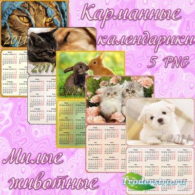 Карманные календари 2011