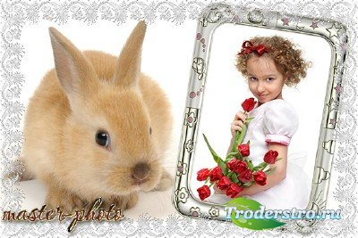 Рамка для фотошопа с кроликом
