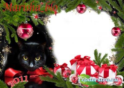 Рамка С Новым годом! С милым котиком!