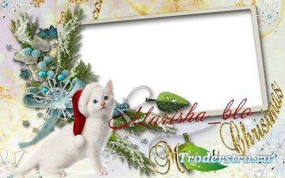 Новогодняя и рождественская рамка 2011 - Белый кот