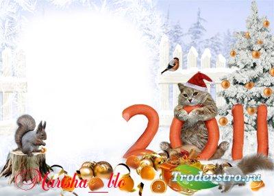 С Новым годом! рамка 2011 с котом для фотомонтажа в фотошопе