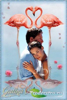 Оригинальная рамка для фото - Розовые фламинго