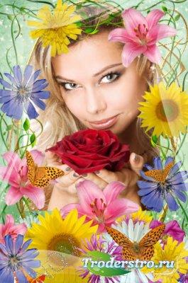 Рамка для фотошопа - Весна пришла