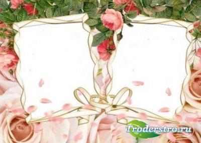 Рамка для фотошоп – Розы на двоих