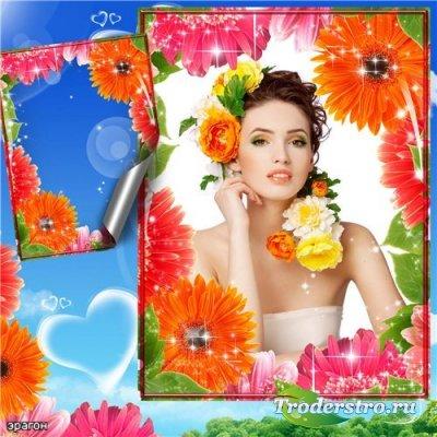 Цветочная рамочка для фотошопа – Яркие герберы