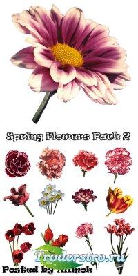 Клипарт - Фотообъекты. Весенние цветы (Часть 2)