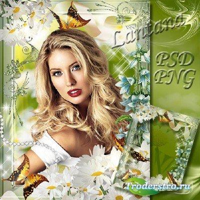 Рамка для фото - Лето, бабочки, ромашки