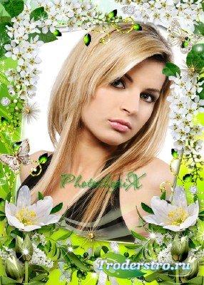 Цветочная рамка для Photoshop – Белая черемуха