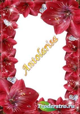 Рамочка для фото - Бриллианты в цветах