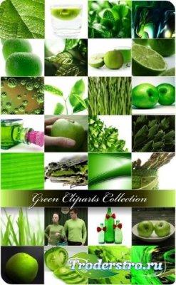 Коллекция клипартов в зеленом стиле