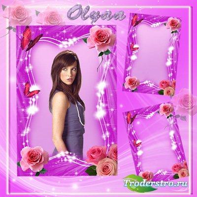 Рамка для фото - Прелестные розовые розы