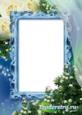 Рамка для фотошоп – Белые розы