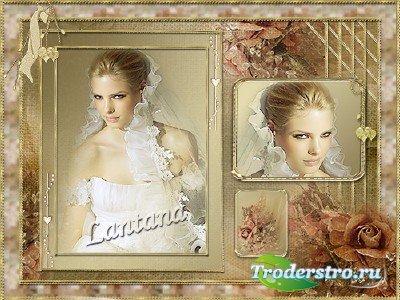 Рамка для фотошопа - Бордовая роза, бархатный атлас