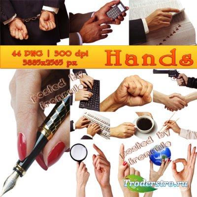 Stock Photos: Hands / Руки