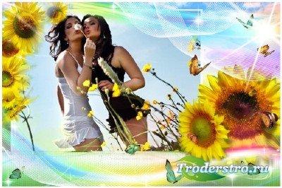 Фоторамка - Цветы солнца