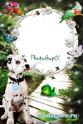 Рамка для Photoshop – Далматинец в волшебном лесу