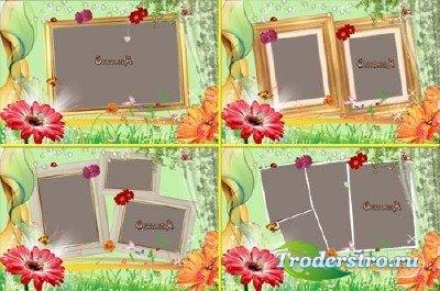 Зелёный набор из 4 рамочек для фото Шикарная гербера