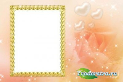 Рамка для фотошоп – Нежная роза