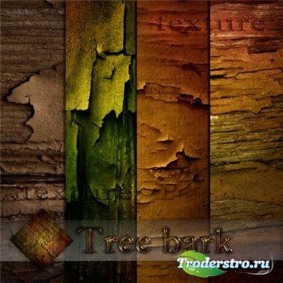 Текстуры коры дерева /Tree bark textures