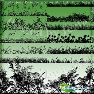PNG Клипарт - Бордюр - трава, растения