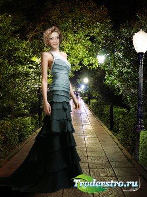 Шаблон для фотошопа «Ночная прогулка»
