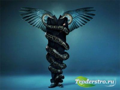 Мужской шаблон - Темный ангел в объятиях змей